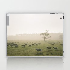 Sunrise burning through heavy fog over field of grazing sheep. Norfolk, UK. Laptop & iPad Skin