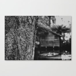 Lakehouse Canvas Print
