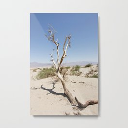 Tree branch Dune Death Valley Metal Print