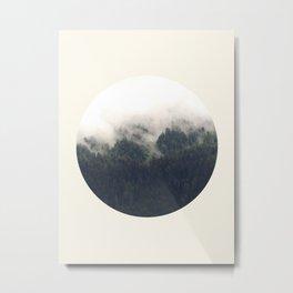 Misty Forest Metal Print