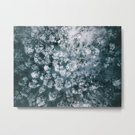 Winter Forest - Aerial Photography Metal Print