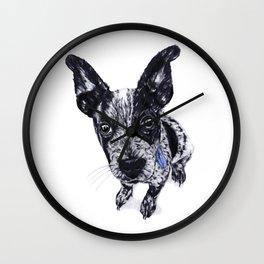 Blue Healer Wall Clock