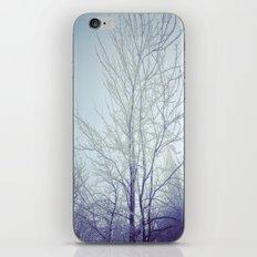 Winter 2.0 iPhone & iPod Skin