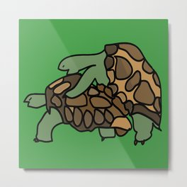 Turtle Galapagos mate love mating  Metal Print