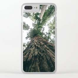 California Redwoods Clear iPhone Case