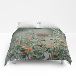 Desert Wildflower - 2 Comforters