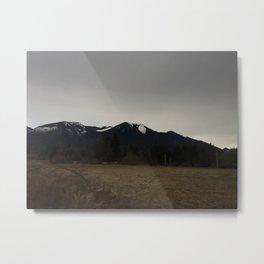 Frostbitten Metal Print
