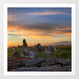 Salty Raven of Cape Meares Driftwood Sunset by Seasons K Art Print