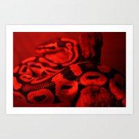 Red Snake Art Print
