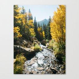 Colorado in the fall Canvas Print