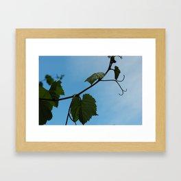 Sky Touchers Framed Art Print