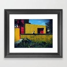 Irish Hens  Framed Art Print