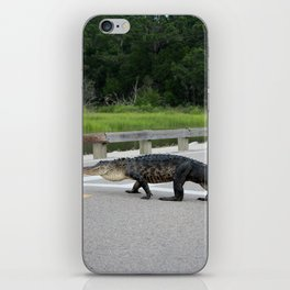 Alligator Right Of Way iPhone Skin