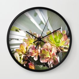 Succulent Layers Wall Clock