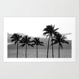 Tropical Darkroom #174 Art Print