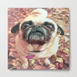 Pug Love ~ In Delilah's Eyes Metal Print