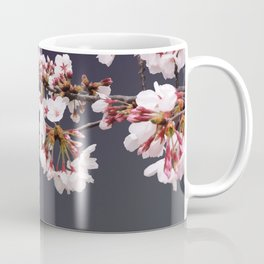Cherry Blossoms (illustration) Coffee Mug