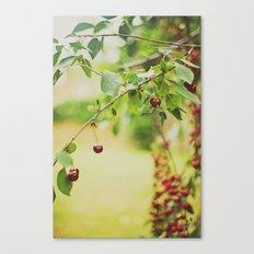 Cherries... Canvas Print