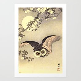 Koson Ohara - Scops Owl in Flight, Cherry Blossoms and Full Moon - Japanese Vintage Woodblock Art Print