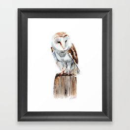 Barn Owl - Watercolour Painting Framed Art Print