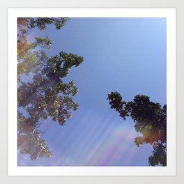 morning sunrays Art Print