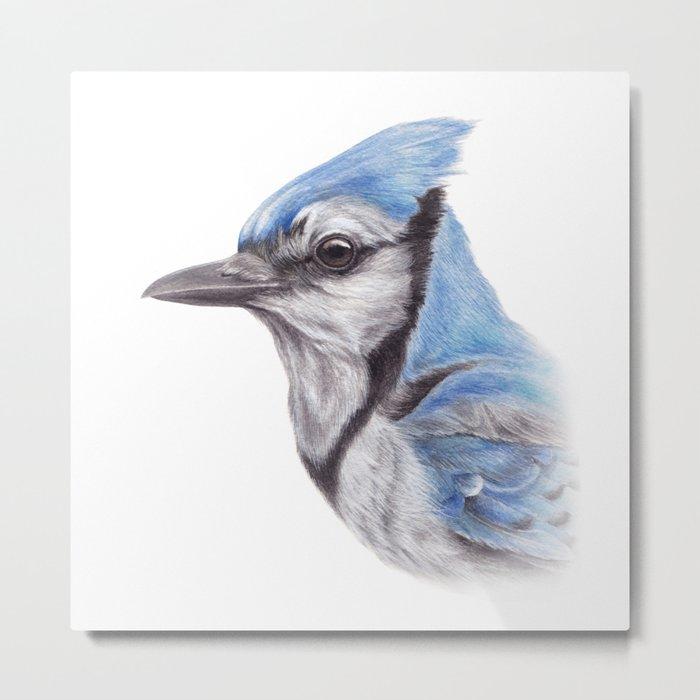 Blue Jay - CYANOCITTA CISTATA | Watercolour | Painting | Animal | Nature | Art Metal Print