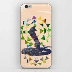 Chinese Lunar New Year and 12 animals  ❤  The SNAKE 蛇 iPhone Skin