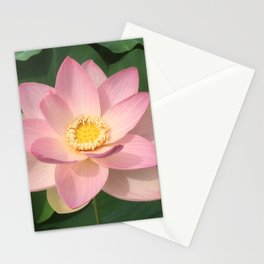 Lotus Pink Stationery Cards
