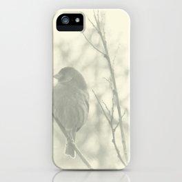 Subtlety iPhone Case
