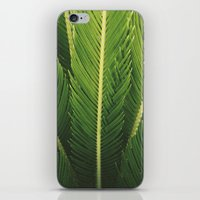 palm tree iPhone & iPod Skins featuring palm tree by Life Through the Lens