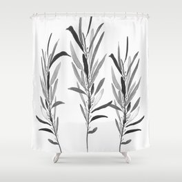 Eucalyptus Branches Black And White Shower Curtain