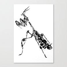 Violin Mantis Canvas Print