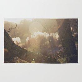 garden sunburst... Rug