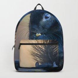 Black Squirrel Backpack