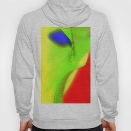 Landscape multicolor ign 541 Hoody