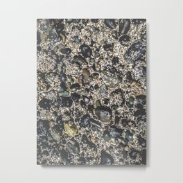 salish sea Metal Print