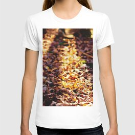 As The Leaves Fall, So Too, Does the Sun T-shirt