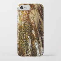 birch iPhone & iPod Cases featuring Birch by TakaTuka Photo