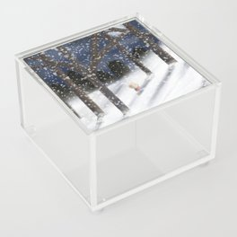 A Winter Walk Acrylic Box