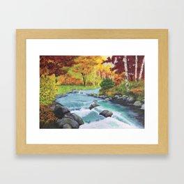 Colourful display Framed Art Print