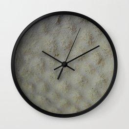 Star Coral Wall Clock