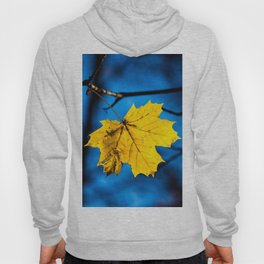 Yellow Mapple Leaf On Blue Hoody