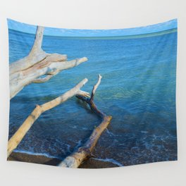 Lake Erie from Point Pelee National Park, Canada Wall Tapestry