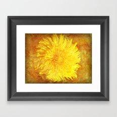 Sunshine Dandy Framed Art Print