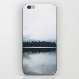 Minimalist Cold Landscape Pine Trees Water Reflection Symmetry iPhone Skin
