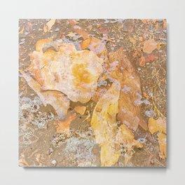 Bark litter under water Metal Print