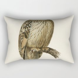 Short-eared Owl (Asio flammeus) illustrated by the von Wright brothers Rectangular Pillow
