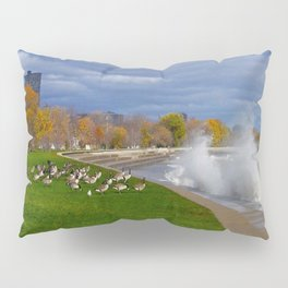 Time to Fly South? (Birds of Chicago Collection) Pillow Sham