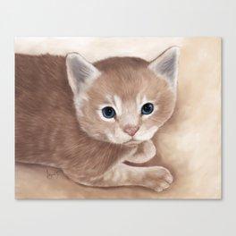 Tabby Kitten Painting Canvas Print