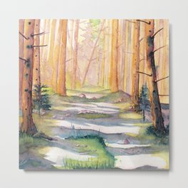 Down The Forest Path Metal Print